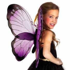 Ailes de papillon de couleur