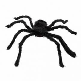 Grosse araignée noire d'environ 40 cm de diamètre