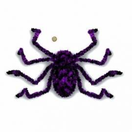 Grosse araignée bicolore avec une toile d'araignée