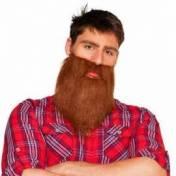 Longue barbe de Hipster